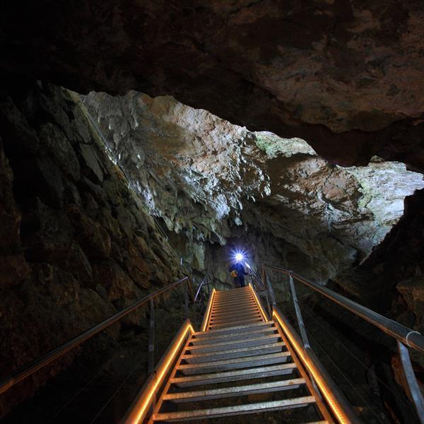 Visita guiada a la cueva