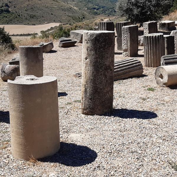 Visita guiada - yacimiento arqueológico